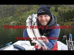 Fiskeskolen s3e3 Kolmule- og vassildfiske
