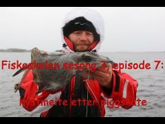 Fiskeskolen s3e7 Kystmeite etter piggskate