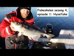 Fiskeskolen s4e1 Hysefiske m/handleliste