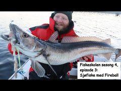Fiskeskolen s4e3 Sjøfiske Fireball m/handleliste