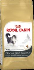 Royal Canin Norwegian Forest (Skogkatt) 2kg