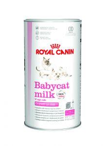 Royal Canin Babycat milk 300gr