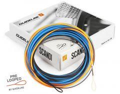 Guideline PT Scandi I/S2/S3 Skyteklump