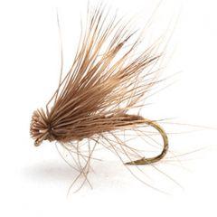 Cdc Elk Caddis Brown