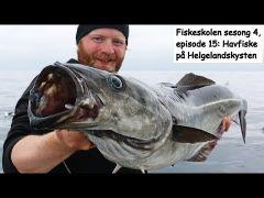 Fiskeskolen s4e15 Havfiske på helgelandskysten