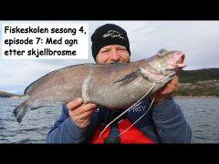 Fiskeskolen s4e7 Skjellbrosme m/handleliste