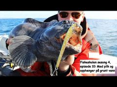 Fiskeskolen s4e10 På grunt vann m/handleliste