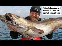 Fiskeskolen s4e11 Agnfisk på dypt vann m/handleliste