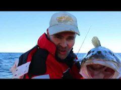 Havfiskeskolen s2e2 Torsk m/handleliste