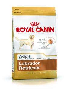 Labrador Retriever Adult 12kg