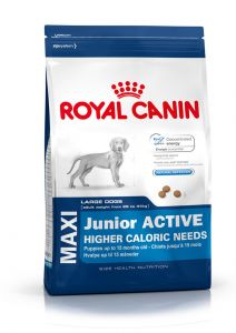 Royal Canin Maxi Junior Active 15kg